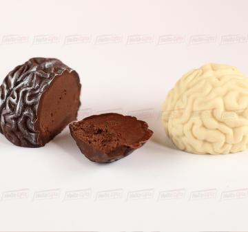 Подарки на день химика | Упаковка: тубус 12,5x7,5 см., брендирование бесплатно.  Смесь орехов: миндаль, кешью, фундук 150 г.  Шоколадный мозг 60 г, из темного или белого шоколада  Barry Callebaut (Бельгия). При тираже от 100 штук возможно изготовление шоколадного мозга с начинкой пралине. | Креативные корпоративные подарки на праздники,  мероприятия и  конференции |   подарки клиентам  с логотипом. Шоколадный мозг.
